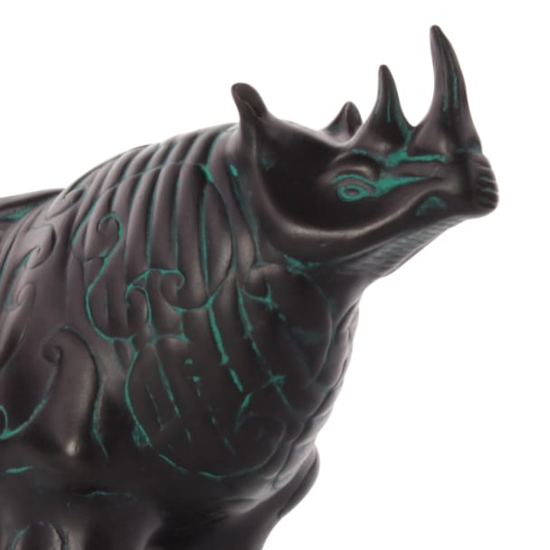 Rhino Hemispherical Overview Closeup